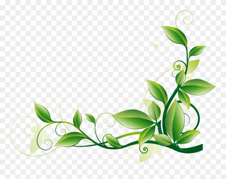 Download Hd Cvetochnyj Ornament Zhelto Zelenyj Vytyanutyj Leaf Corner Border Png Clipart And Use The Free Clipar In 2020 Wedding Album Design Album Design Free Clip Art