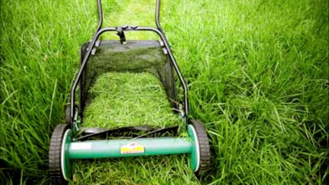 Grass Clippings Removal Services in Omaha NE Omaha Junk