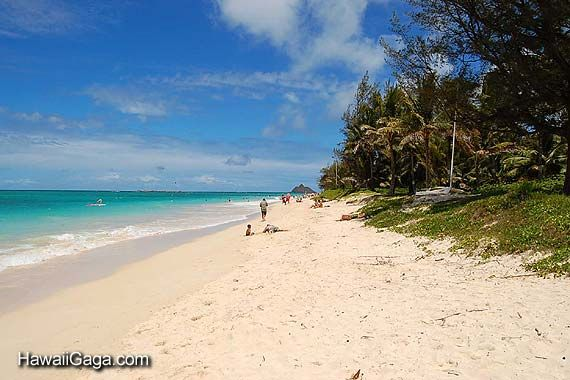 Kailua Beach State Park Oahu Hi Where We Got Married And Our Home Away From