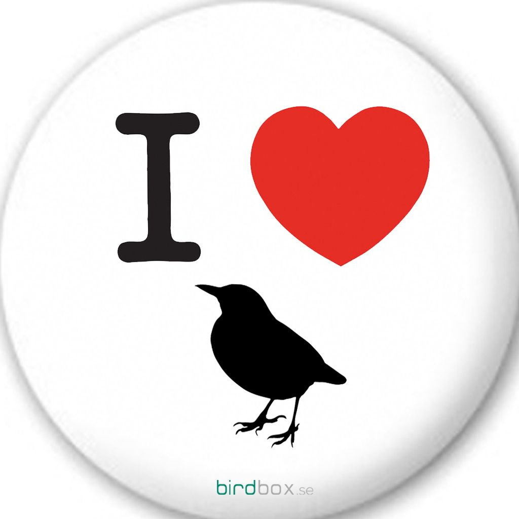 "Love Bird Quotes I Love Birds""  Birdbox.se Bird Quotes  Birdy Quotes"