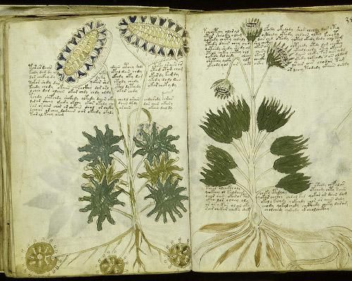 """WORLD'S BIGGEST UNSOLVED MYSTERIES - """"Voynich Manuscript"""" (made between 1402 to 1438)  Its pages are filled with colorful drawings of strange diagrams, odd events and plants that do not seem to match any known species, adding to the intrigue of the document and the difficulty of deciphering it. The original author of the manuscript remains unknown."""