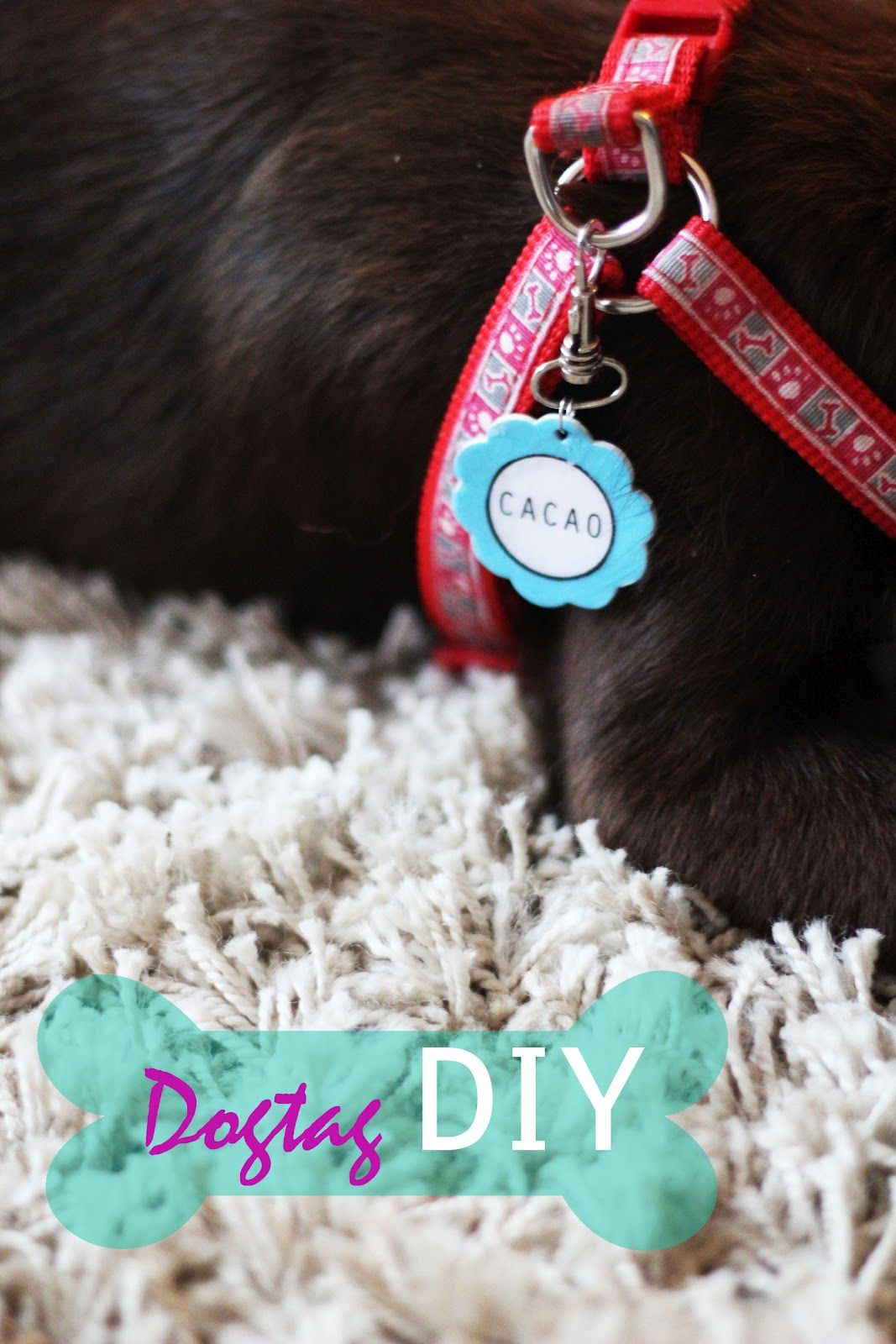 Diy Dog Tag Only Thing I Would Do Different Is Hand Decorate