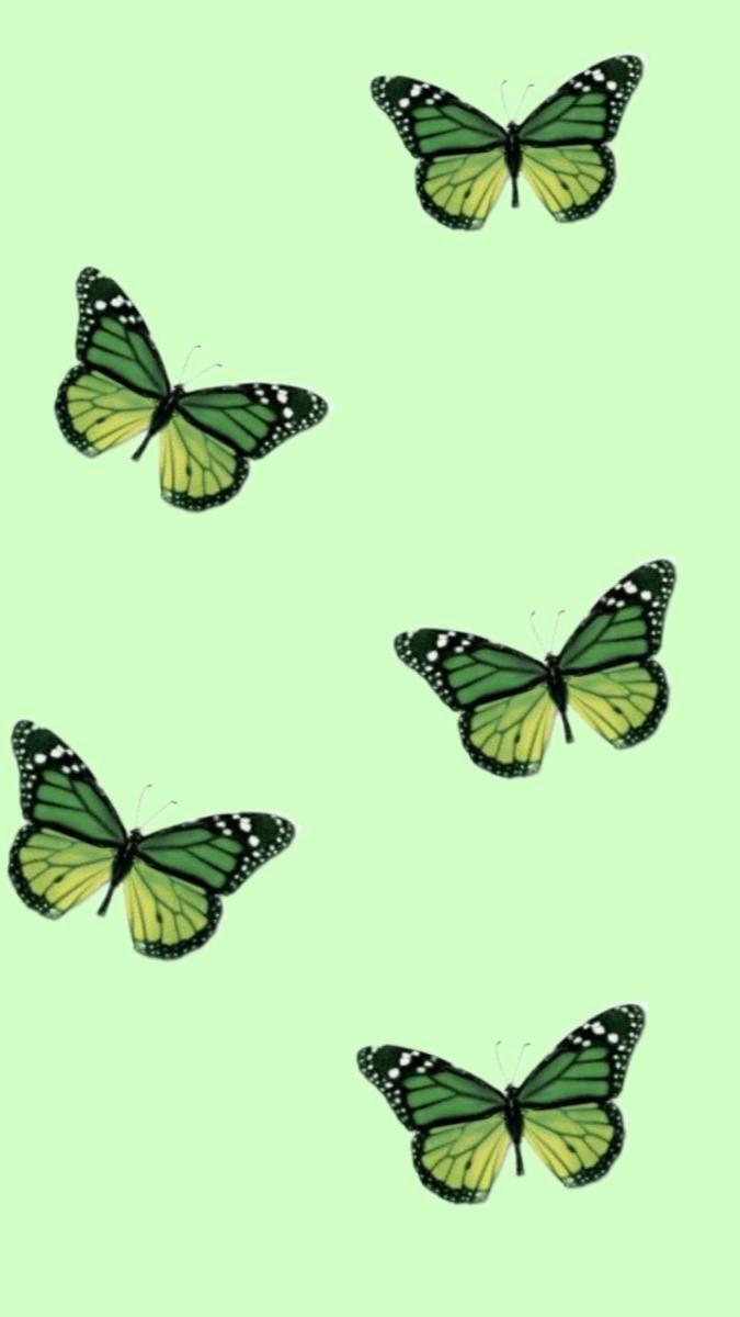 green,blue,pink,purple,black and orange