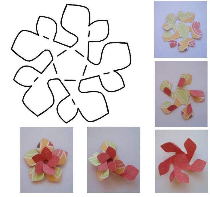 Folded Paper Flower Template Folded paper flower template · found - loose leaf paper template
