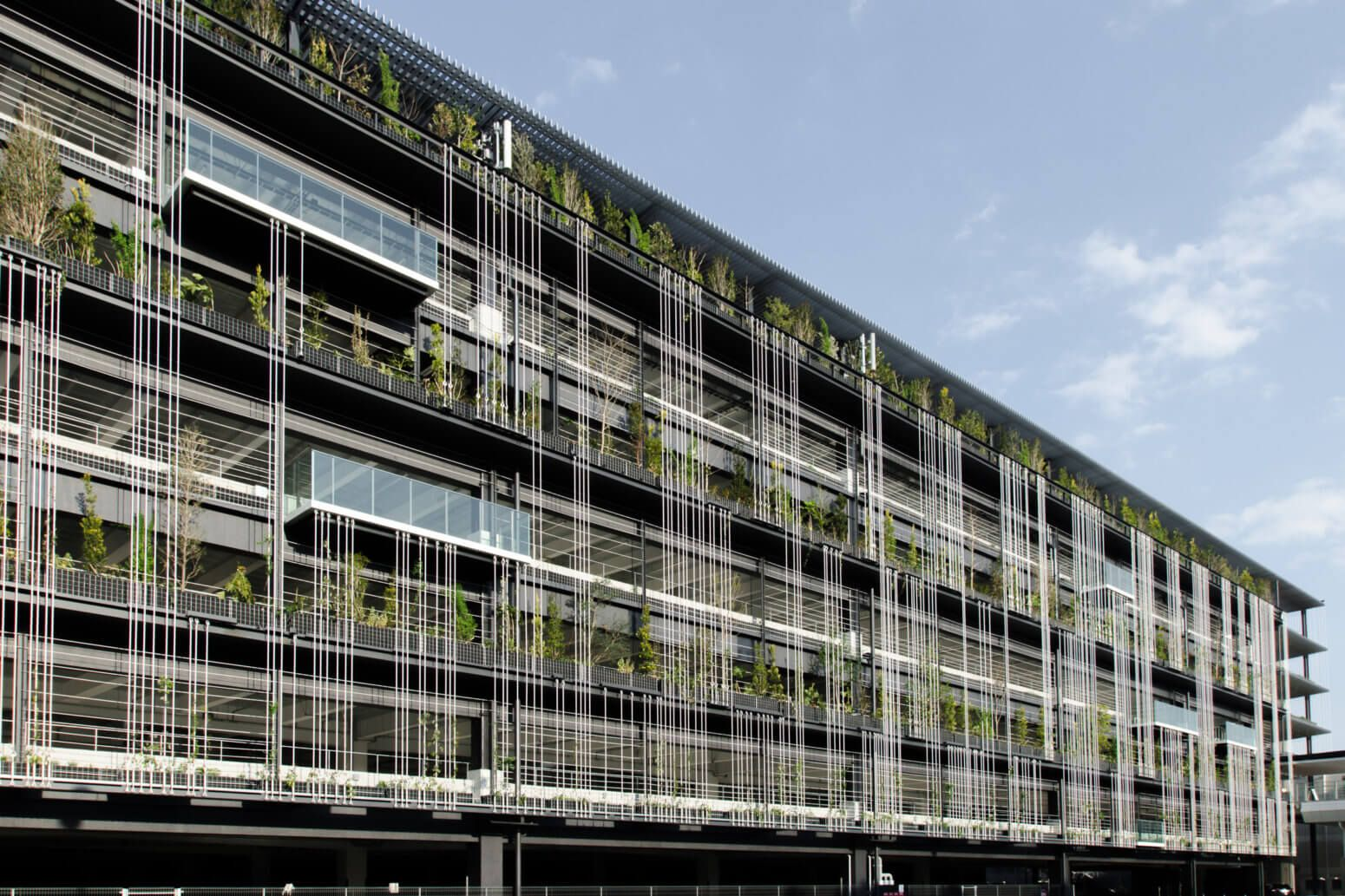 Stgk Inc ランドスケープデザイン ひとが暮らす風景を作る ランドスケープデザイン 緑のファサード 緑の建築