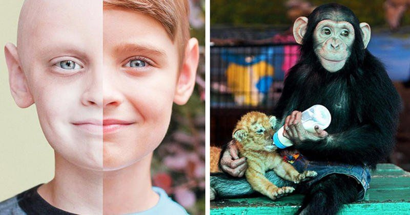 These 16 Shocking Yet Powerful Photographs Might Bring Tears To Your Eyes