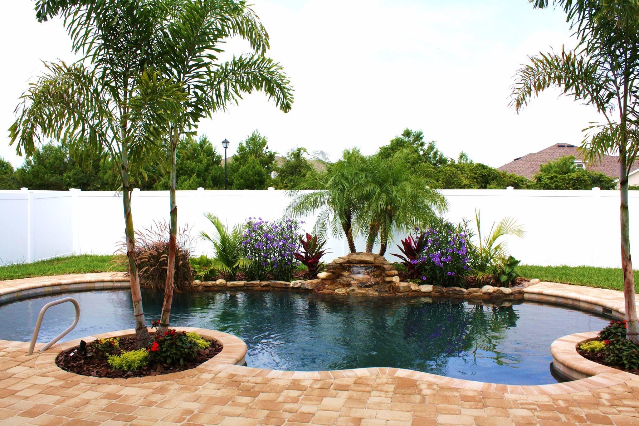 Pin By Sunny Niles On Home Small Backyard Pools Backyard Pool