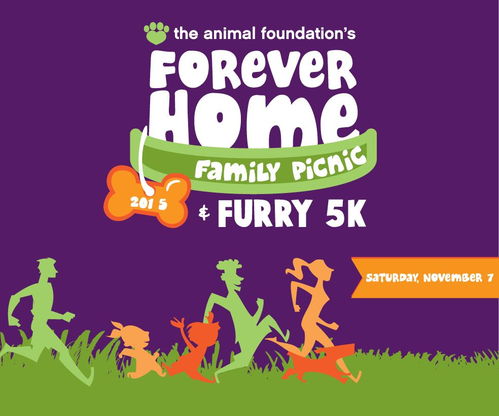 **SAVE THE DATE! FOREVER HOME FAMILY PICNIC AND FURRY 5K NOVEMBER 7!**  Join us for a day of fun and pets at the Forever Home Family Picnic and Furry 5K! In addition to the walk and run, we'll have pawsome activities for people and their pups and some of the best pet vendors in town!  Early registration is open now!  #Vegas #702 #dogsoflasvegas #vegasdogs #Furry5k #shelterpetsrockin