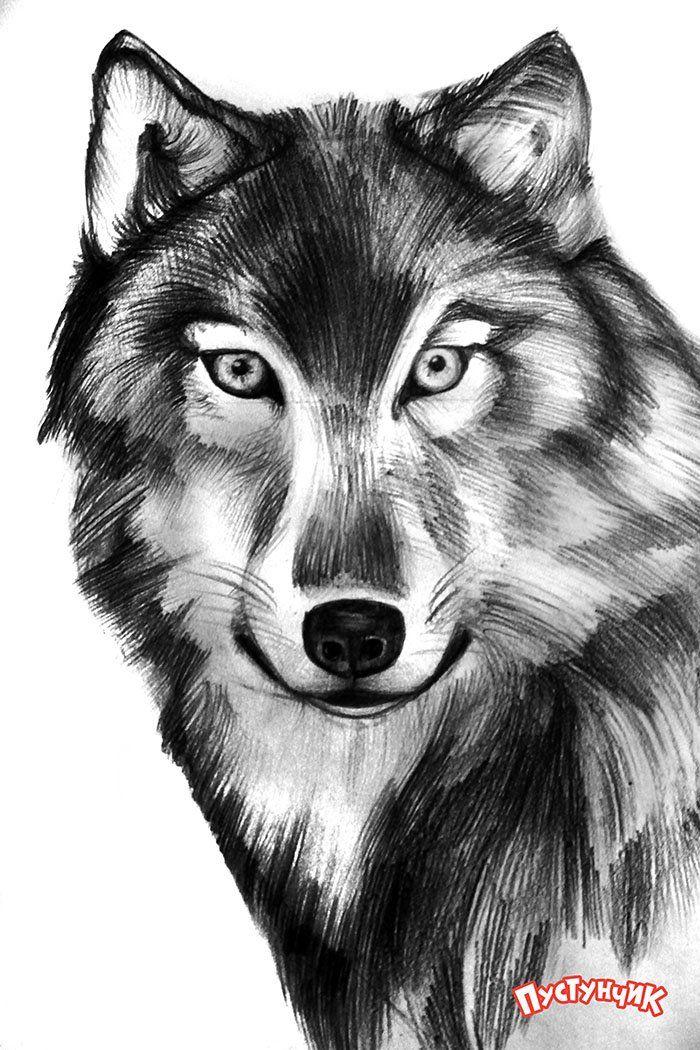 чипсами волки картинки узор как нарисовать оливкового масла