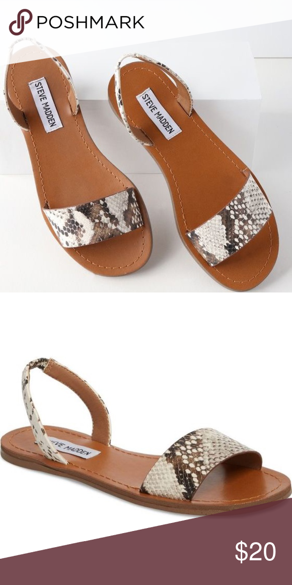 c0471d13826 Steve Madden Snake Alina Sandals Super cute and comfortable Steve Madden  sandals from this season with a snake skin printed toe and ankle strap.