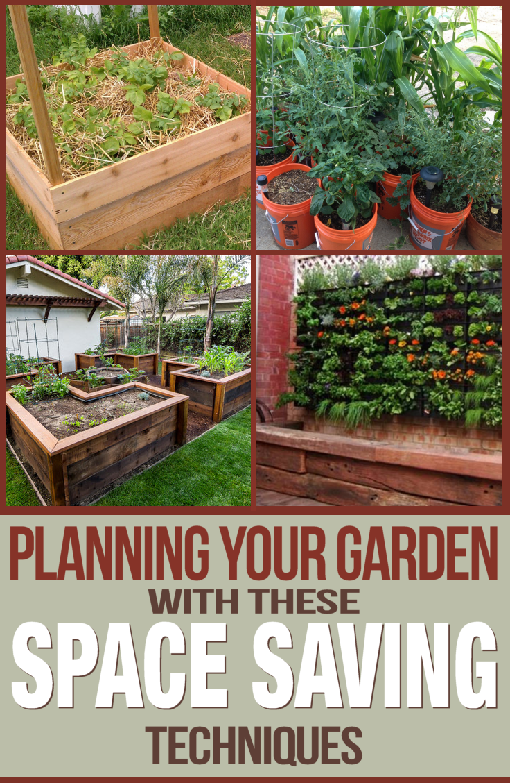 Planning your #vegetable #garden using space save techniques. You don't need a ton of space to have a bountiful harvest year after year.