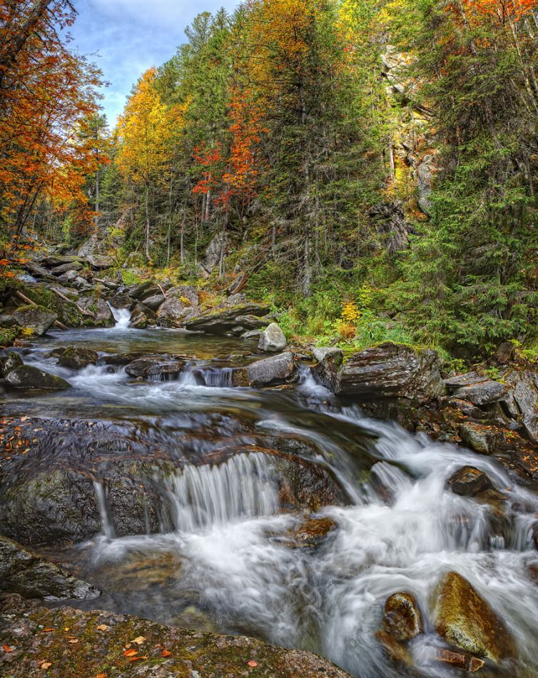 Mountain Stream In Autumn Landscape Nature Forest Mountain Trees Water Stones Colourful Mountai Autumn Landscape Waterfall Landscape Landscape Photos