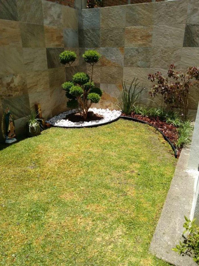 gartengestaltung modern zierbaum in der ecke grner rasen kleine weie steine - Gartengestaltung Bilder Modern