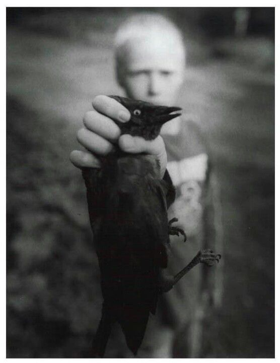 William Ropp