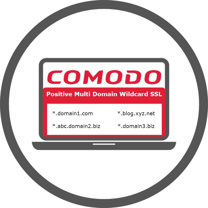 Secure Multiple Domains And Its All First Level Of Domains With