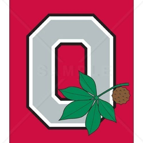 Ohio State Buckeyes Logo Counted Cross Stitch Pattern