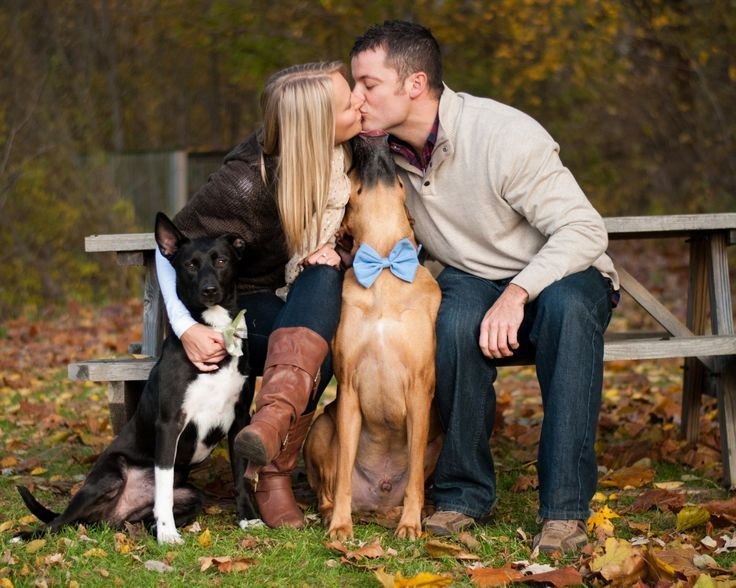 Engagement Photos With Dog Ideas Engagement Picture With Dogs
