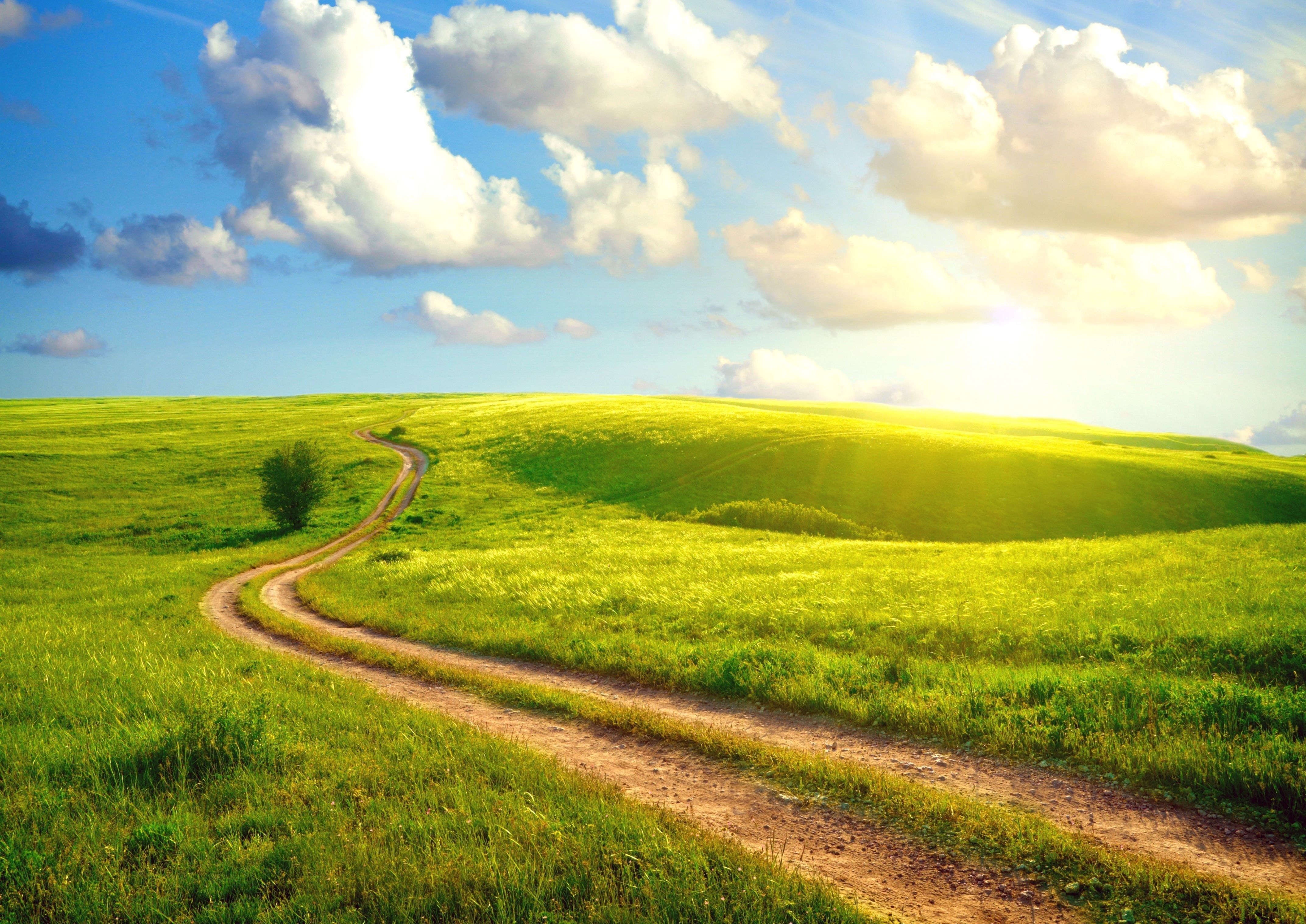 green field wallpaper | landscape | pinterest | field wallpaper and