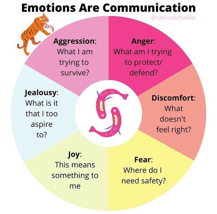 Healing Is Possible For Each And Every One If Us Divyamadhur Lioness Sheroa Mental And Emotional Health Emotions Emotional Awareness