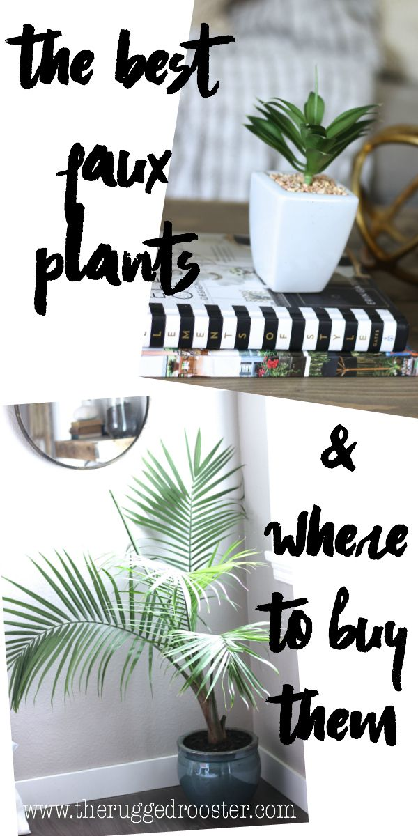 The Best Faux Plants Where To Find Them