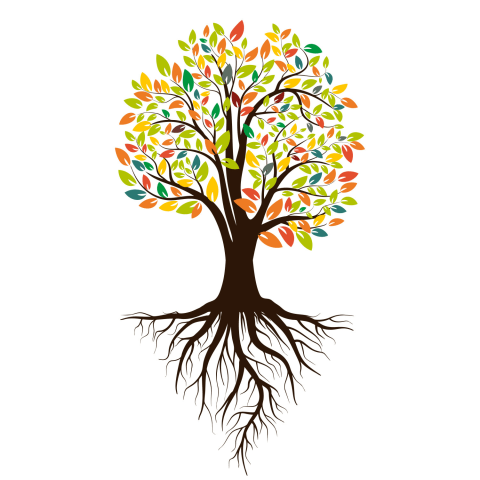 This Image Test Will Reveal The Eye Color Of The Person You Are Going To Marry In 2020 Art Deco Design Graphics Free Vector Graphics Tree Illustration