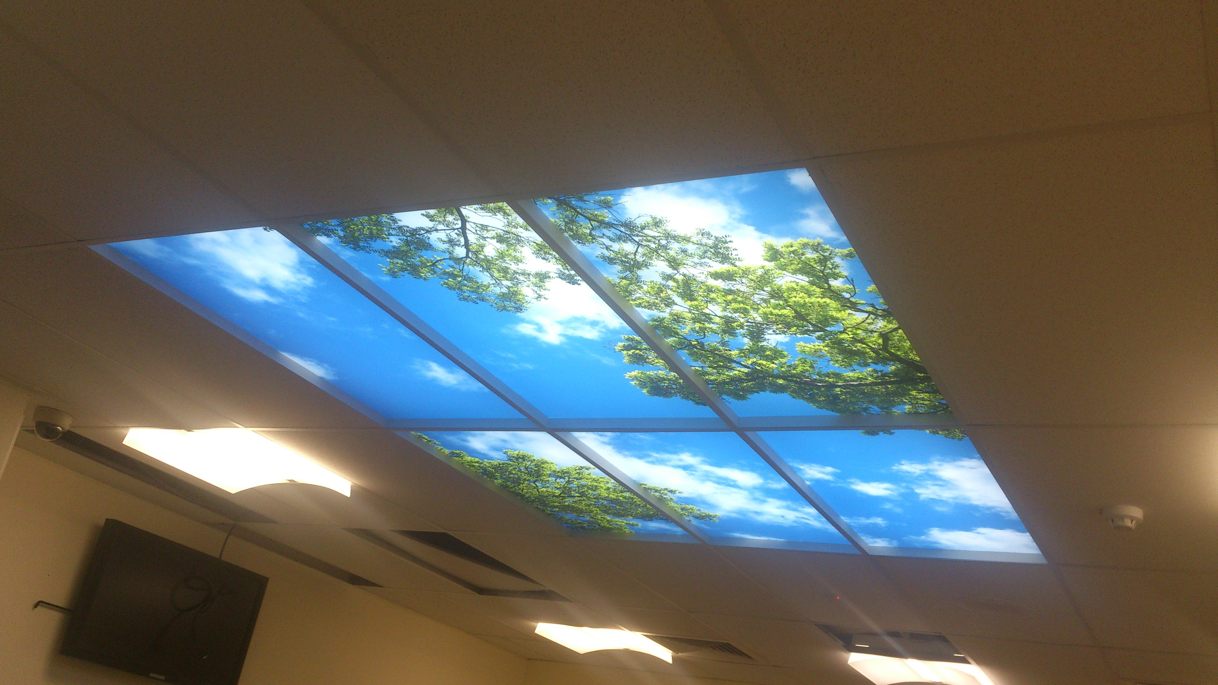 Lighted ceiling panels caboolture hospital emergency room lighted ceiling panels caboolture hospital emergency room mozeypictures Image collections