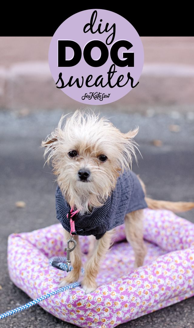 dog sweater sewing pattern and cute puppy pictures | Dog sweater ...