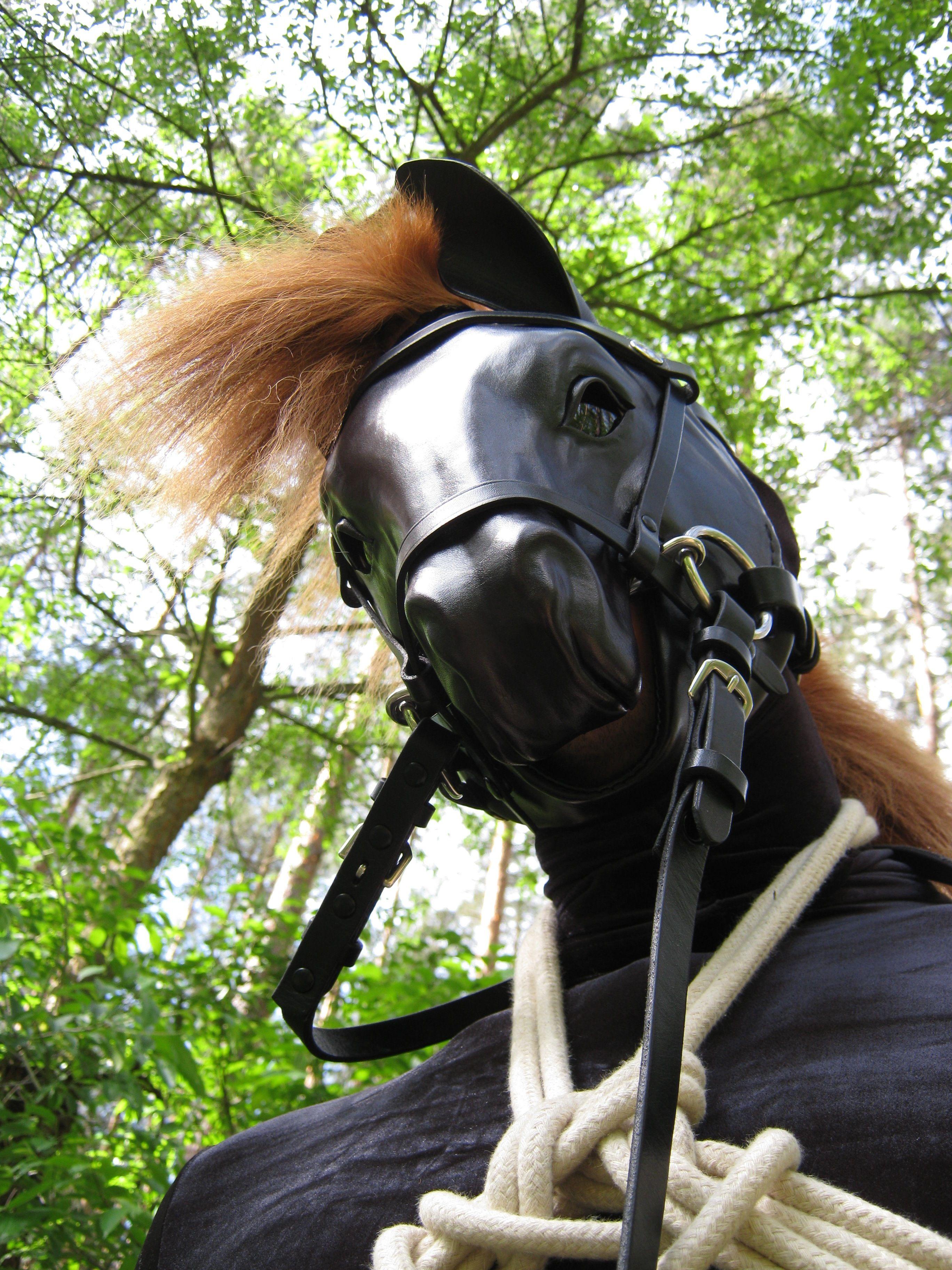human ponyplay | Ponyboy Puschel | Pinterest