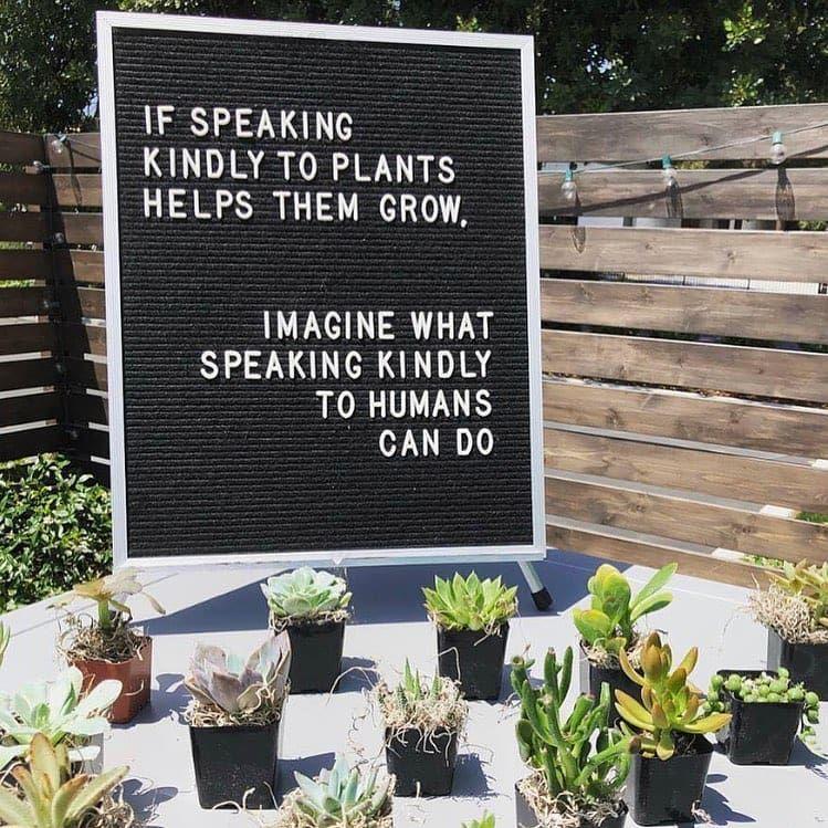 #spokenwords #spilledink #health #poetry #poem #theholyquran #quotes #spokenwordpoetry #healthy #poe...
