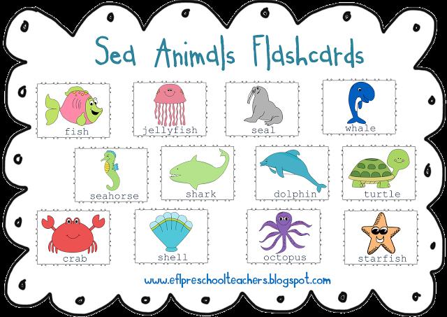 Sea Animals Ocean Theme for Preschool ELL English