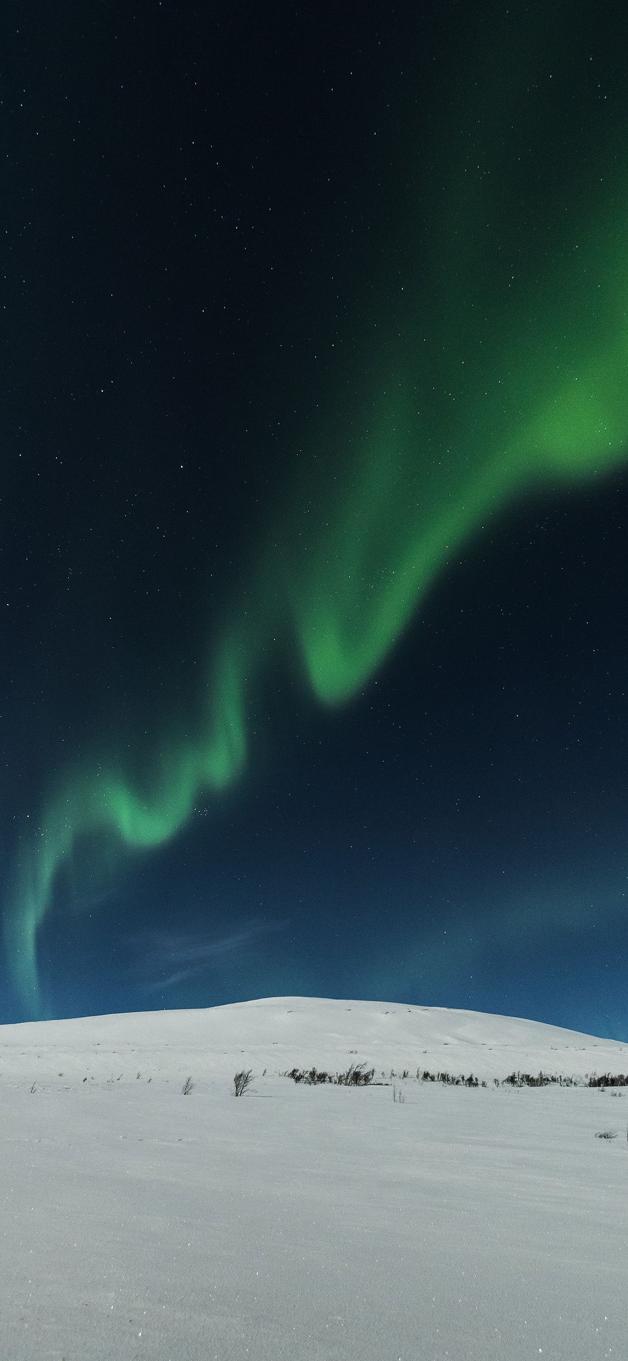 Res 1242x2688, iPhone wallpaper aurora borealis snow