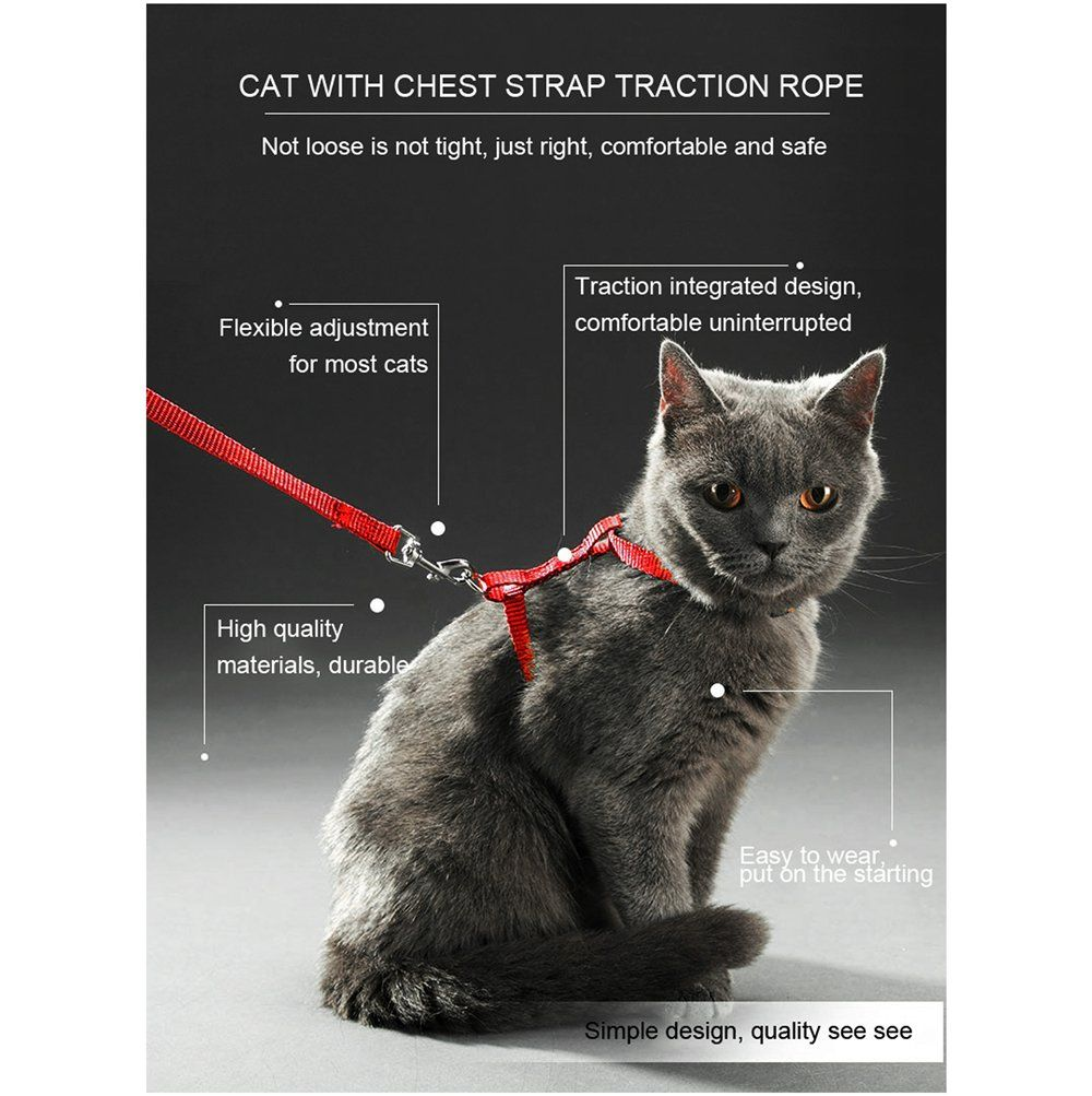 Pin On Cat Harnesses And Leashes