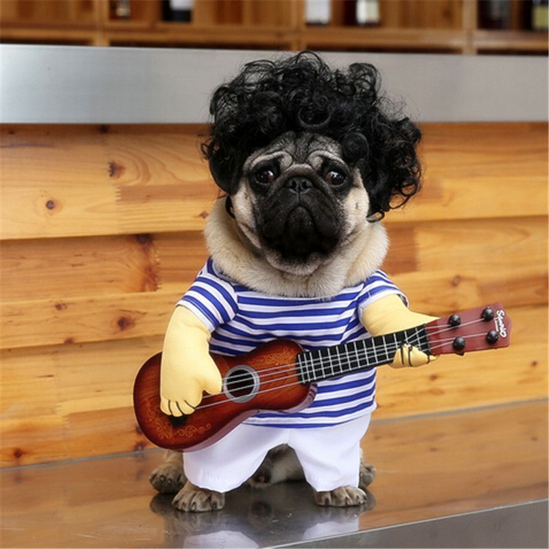Little Serenade Guitar Player Outfit Dog Costumes Funny Pet