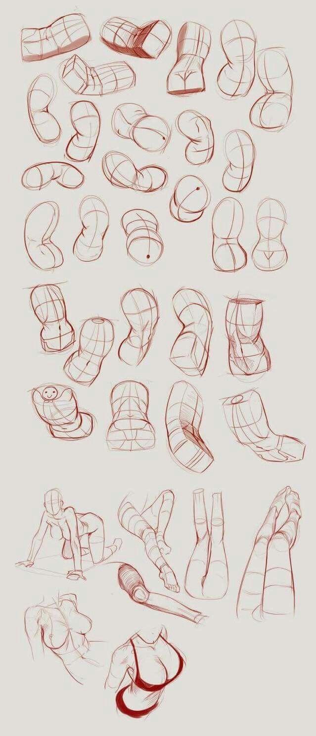Pin de Annie Lam en 人体   Pinterest   Anatomía, Bocetos y Dibujar