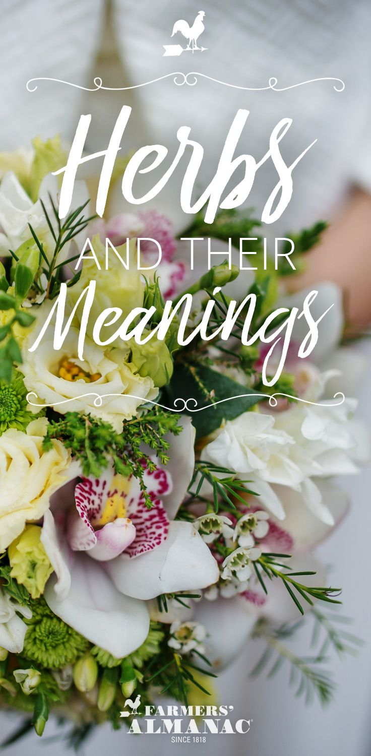 20 Herbs (And Their Meanings) To Add To Your Wedding