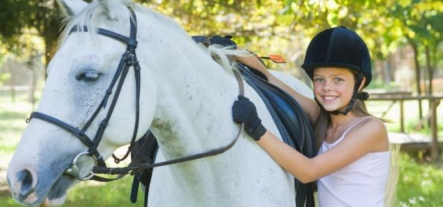 Have you ever wanted to train a horse? In this article you'll find some tips and tricks -- Click it to read the article