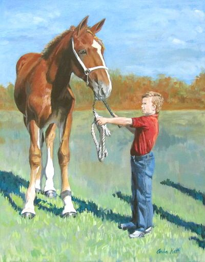 Belgian, horse portrait