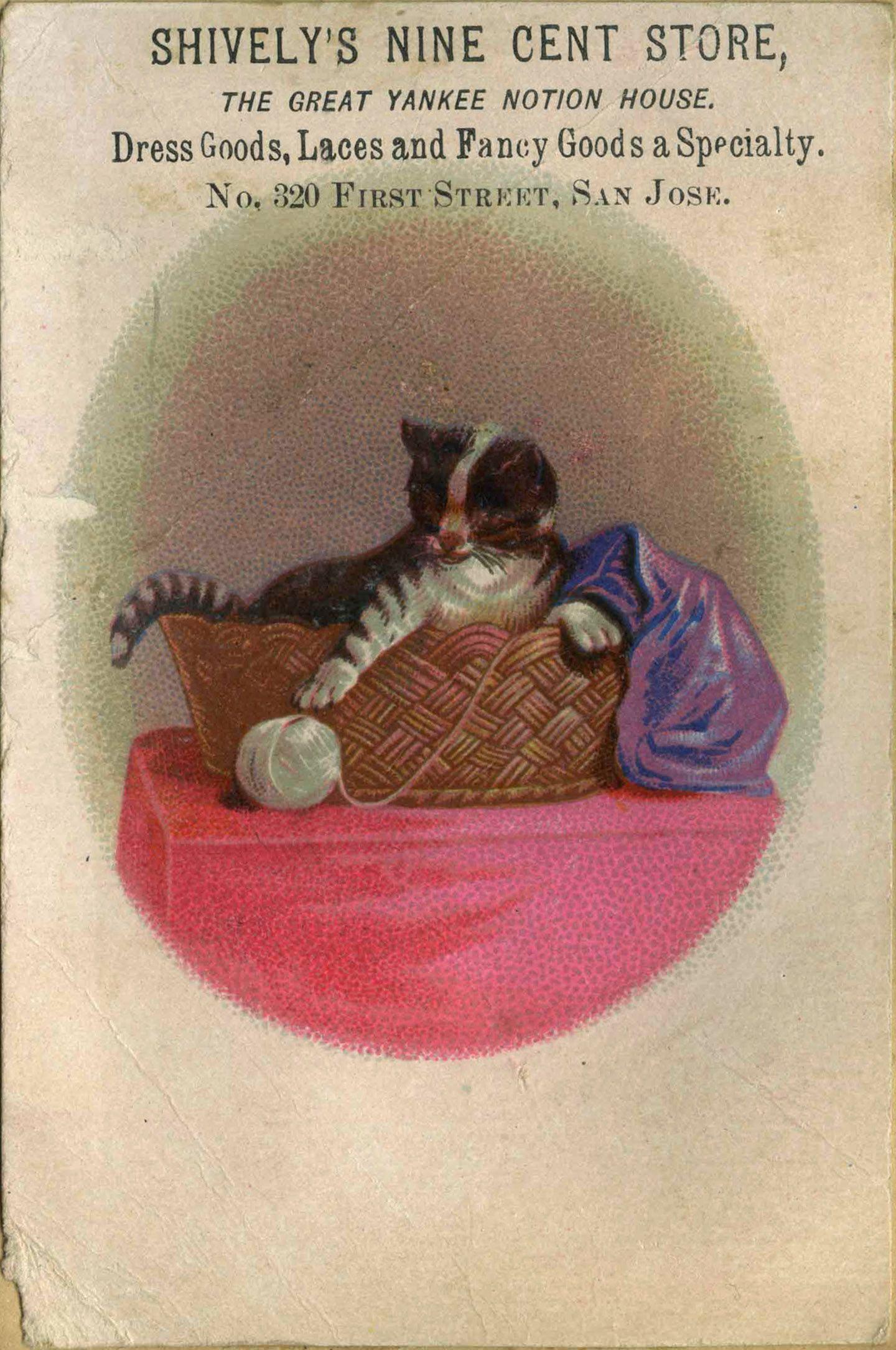 1880s Scrapbook Of Advertisements And Illustrations Kitten And Yarn California Room Illustration Scrapbook