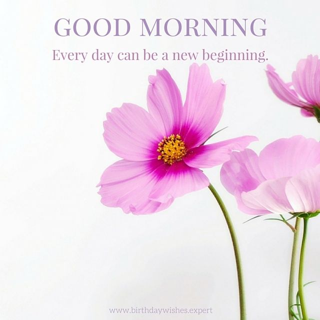 60 Good Morning Quotes With Beautiful Flowers