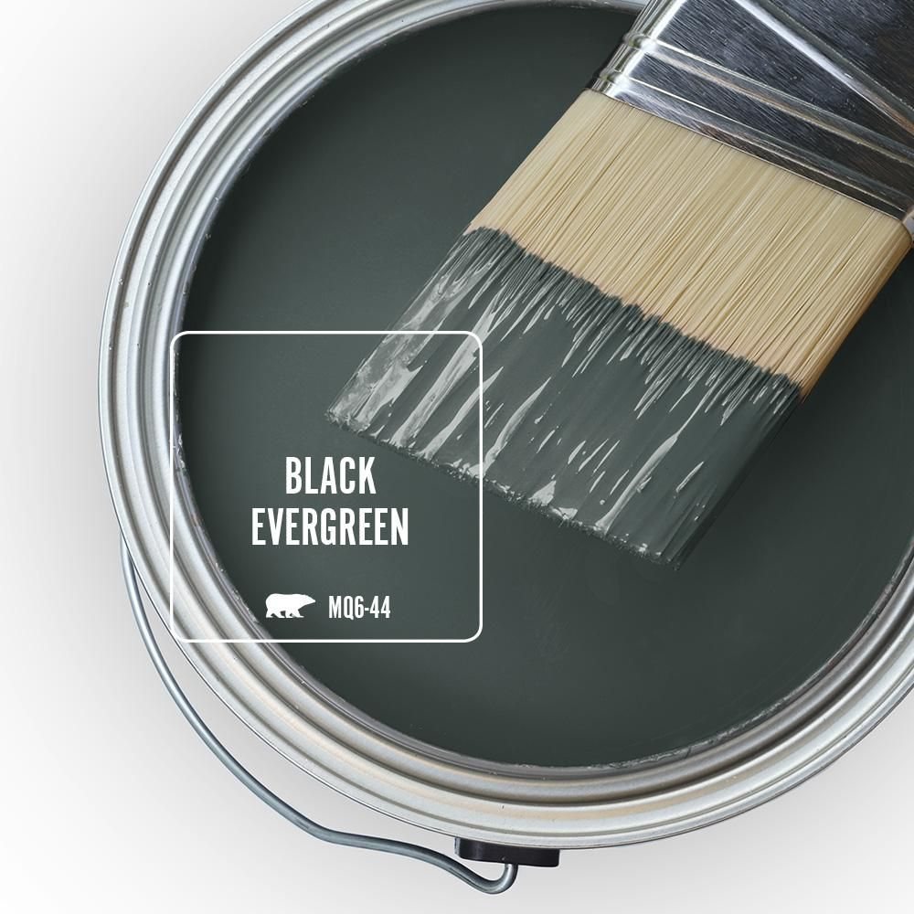 behr marquee 8 oz mq6 44 black evergreen one coat hide on behr paint colors interior id=58976