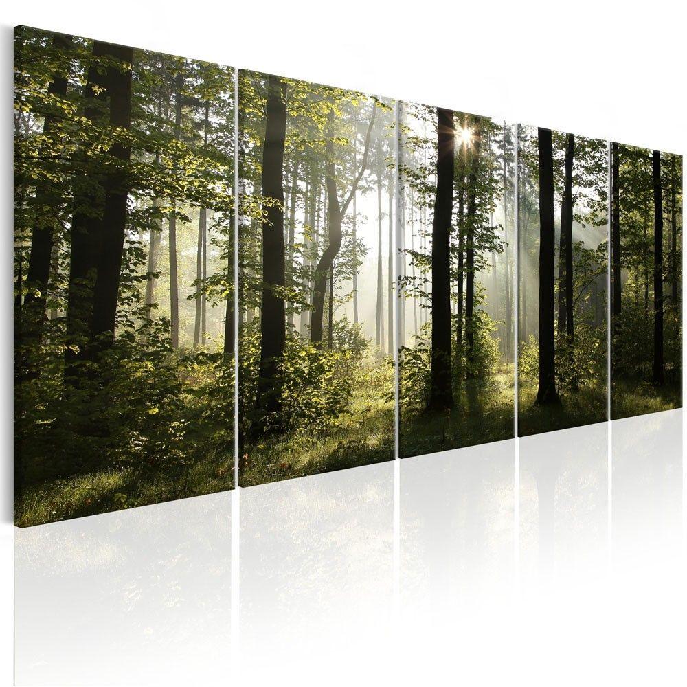 Soldes 2020 Tableau 5 Panneaux Brouillard D Ete En Foret Tableau Et Toile Decoration Murale Decoration Gifi Parement Mural Toile Toile Lumineuse