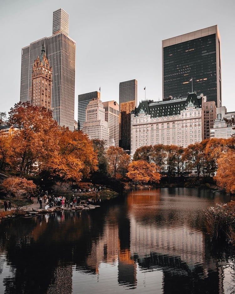 Central Park , New York City on We Heart It City