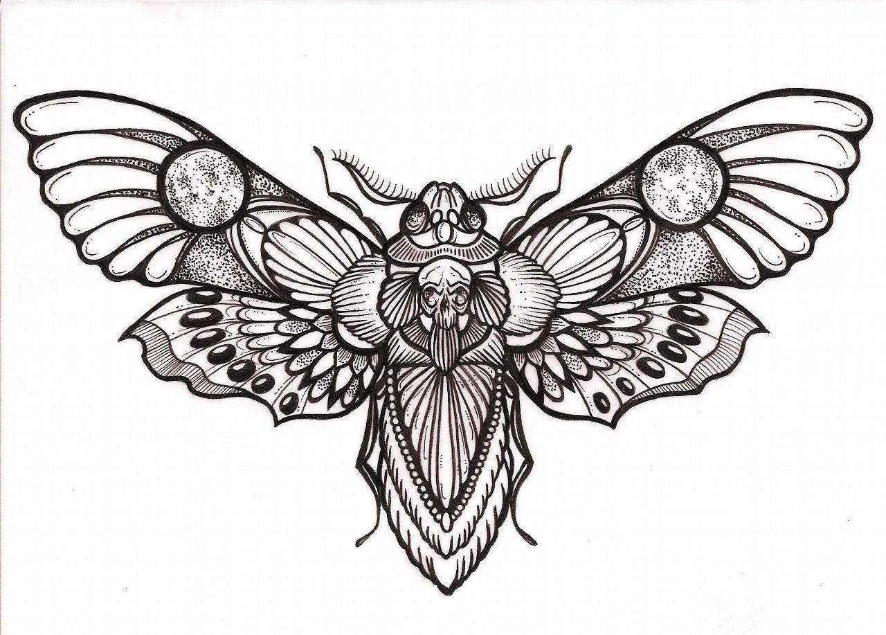 Awesomes Head Hawk Moth Tattoo Design
