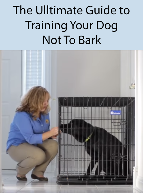 How To Stop A Dog From Barking Training Your Dog Dog Obedience Dog Training Obedience