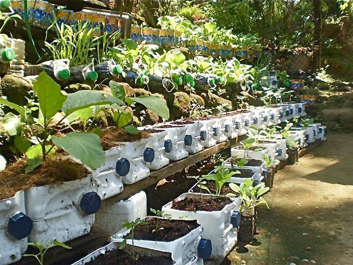 Outstanding Backyard Container Vegetable Garden On Garden Decor