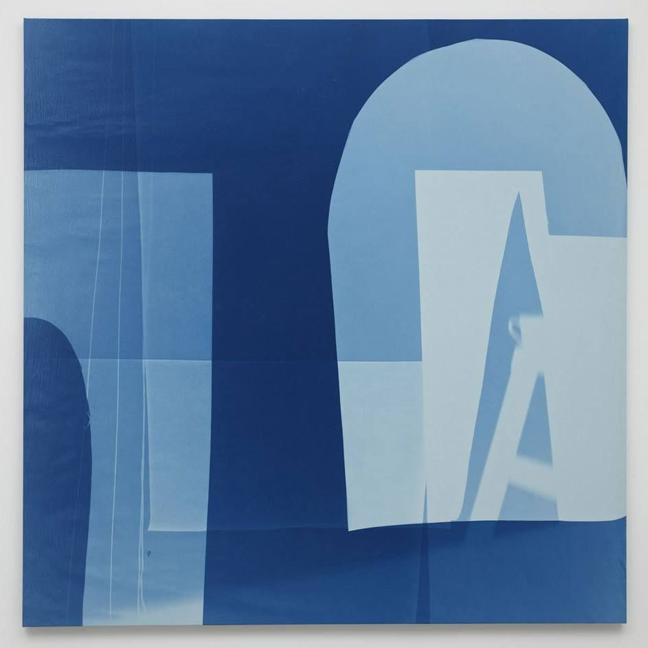 four strings 2015 cyanotype photogram on linen over canvas 96 x 96 inches 243 8 x 243 8 cm. Black Bedroom Furniture Sets. Home Design Ideas