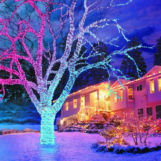 2400 connectable led lights colour changing christmas decor 2400 connectable led lights colour changing christmas decor pinterest light colors christmas lights and led christmas lights aloadofball Images