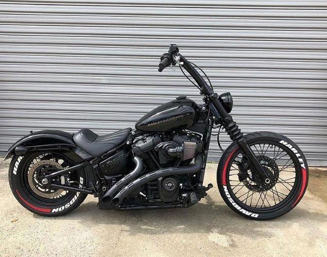 harley davidson softail custom #Harleydavidsonsoftail | Softail custom, Harley  softail, Harley bikes