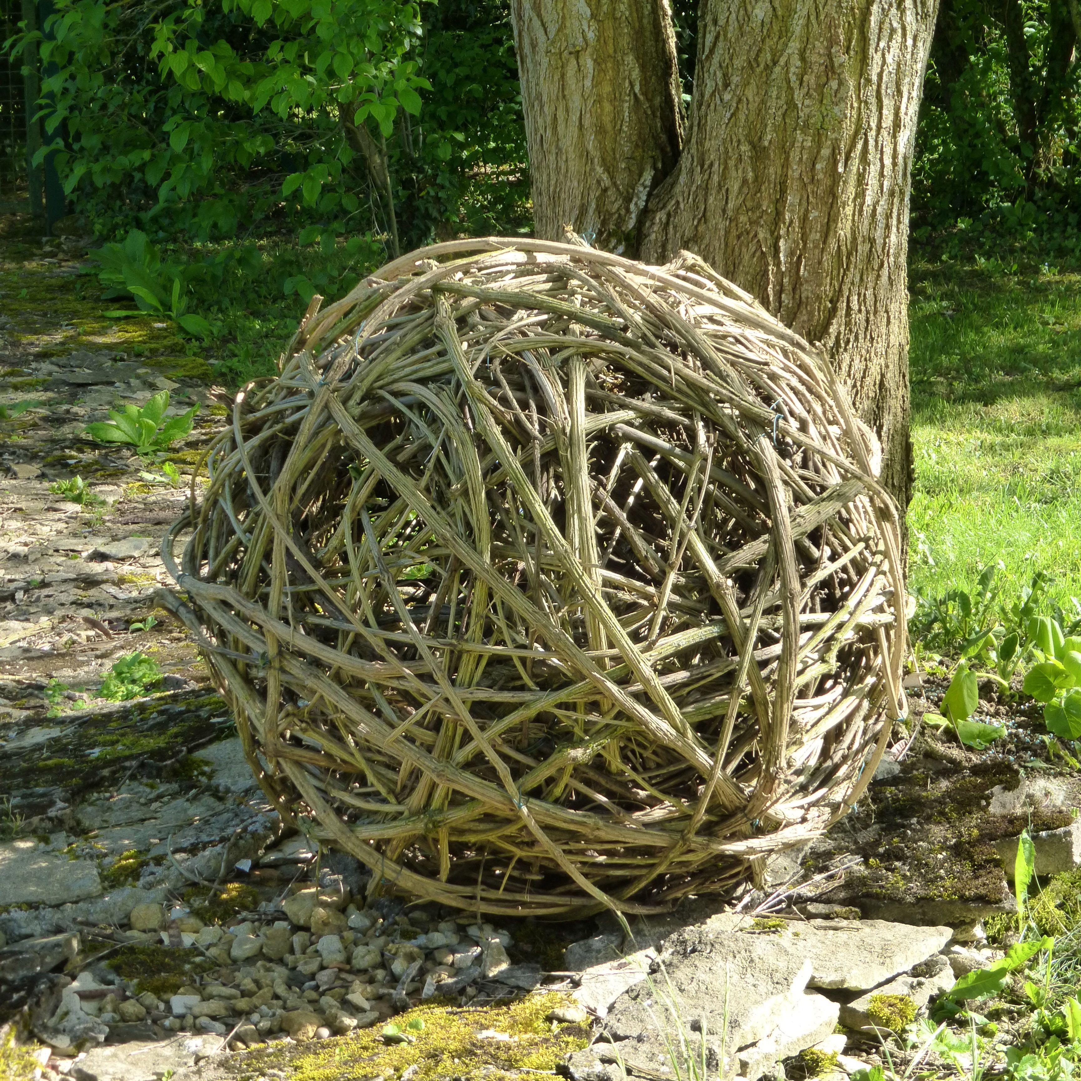 Avec Des Branches De Clematite Sauvage Dans Mon Jardin Laxou