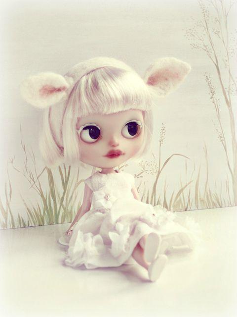 Albino Baby Lamb by Karolin Felix